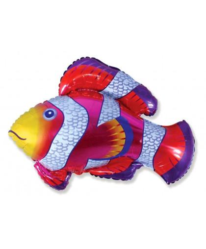Рыба Пестрая